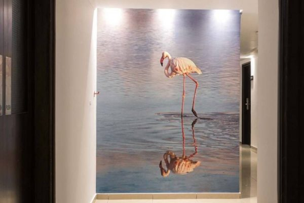 Les Palmiers hall and the photo of a flamingo bird